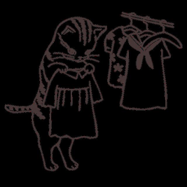clothes-2041864_640